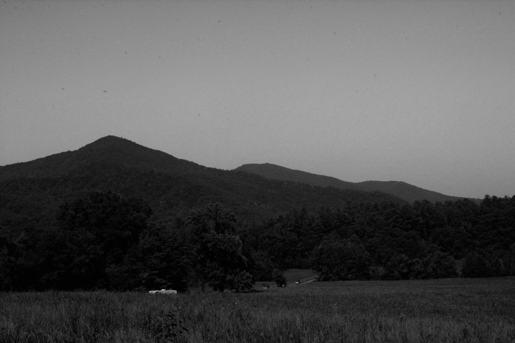 Outdoor Landscapes-3
